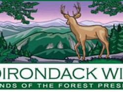 adirondack wild