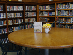 keene valley library