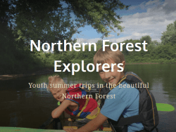 northern forest explorers