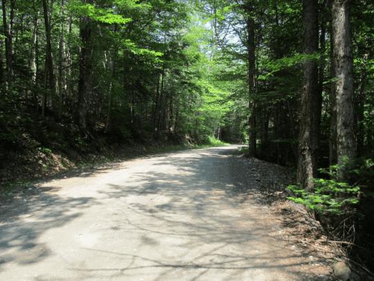 moose river road