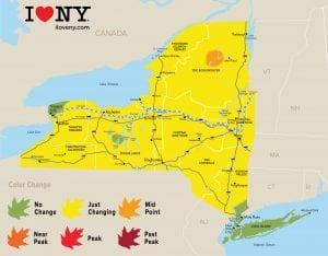 Fall Foliage Reports