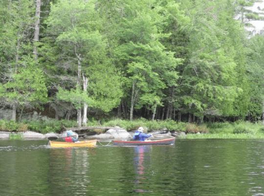 Hornbeck canoes