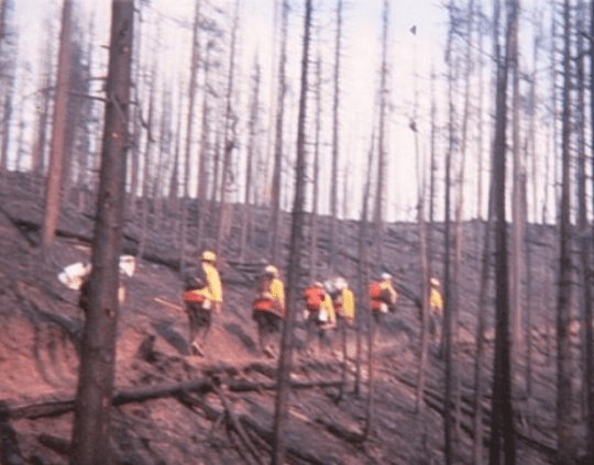 Rangers on NYS first western fire assignment in 1979