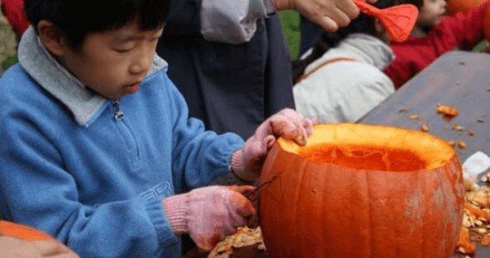A Young boy carving a Jack O Lantern