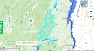 Hammond Pond Wild Forest Map (Courtesy Adirondack Atlas)