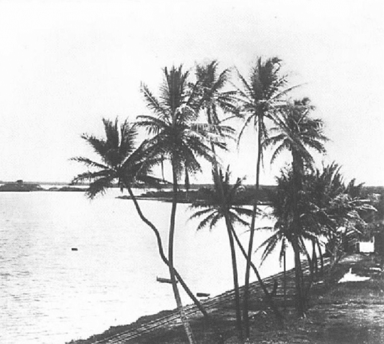 Pearl Harbor in the 1880s