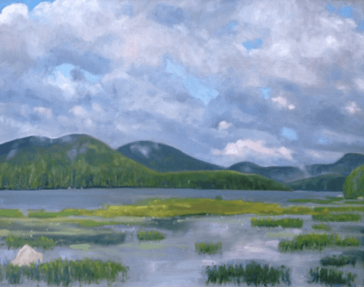 Adirondack Air by Sandra Hildreth