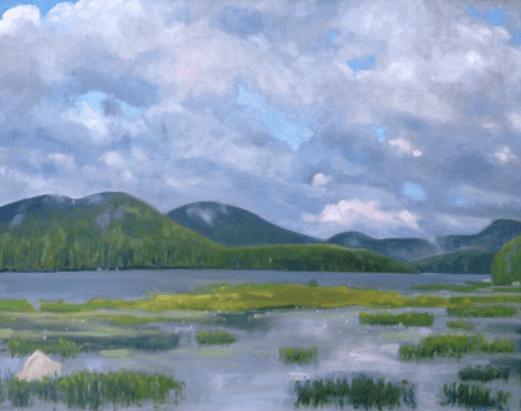 Adirondack Air by Sandra Hildreth