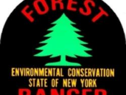 forest ranger logo