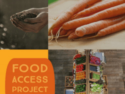food access project nomination