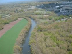 treed buffer along a river