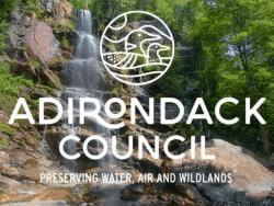 adirondack council new logo
