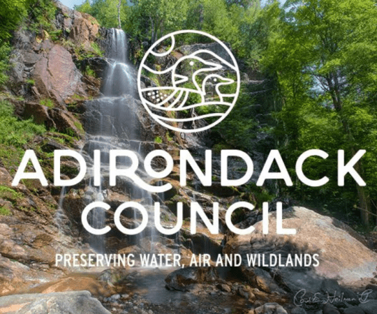 adirondack council new logo