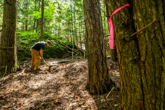 Zack Rabeler a crew member with Wilderness Property Management reroutes a trail at the Adirondack Land Trusts Coon Mountain Preserve