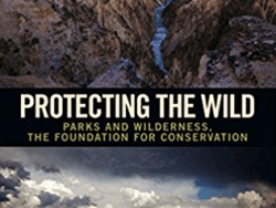 protecting the wild