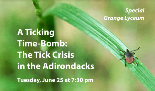 tick crisis in the adks