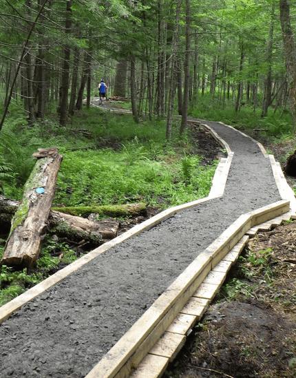 Murphy Middle Bennett trail rehab