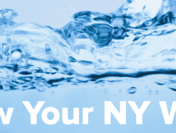 know your ny water