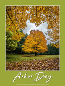 2019 arbor day poster by Paul Bergwall