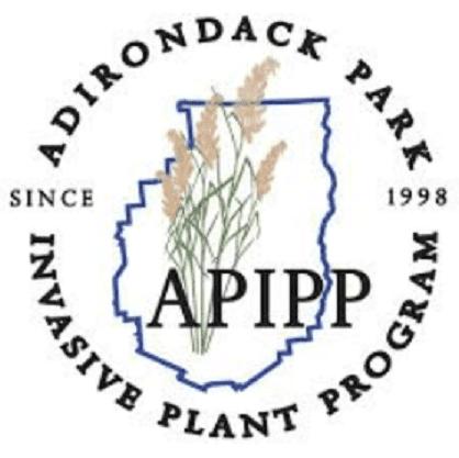 APIPP logo