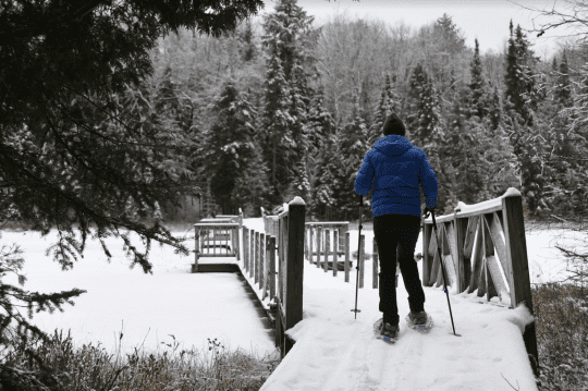 Paul Smiths College Visitor Interpretive Center Cross-Country Ski Trails
