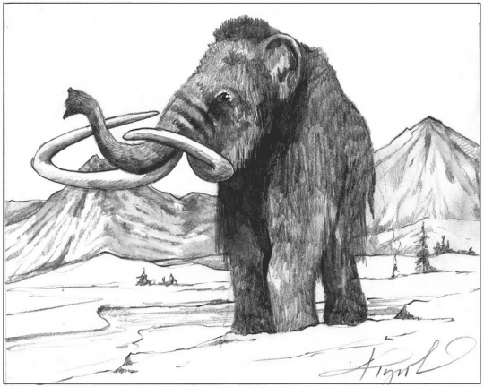 woolly mammoth by adelaide tyrol