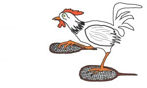 rooster on showshoes