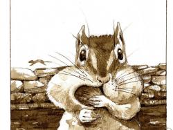 chipmunk by adelaide tyrol