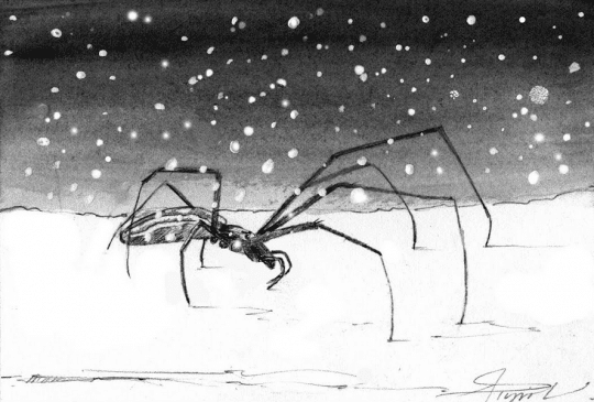 snow spider by adelaide tyrol