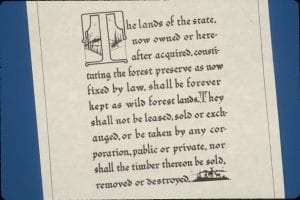 NYS constitution, article 14