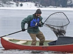 Loon rescue on Lake George