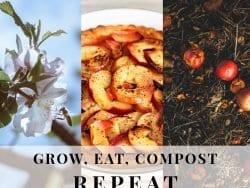 composting graphic
