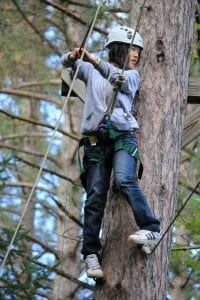girl standing on a tree on a ropes course