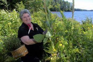 Jane Desotelle garden tour