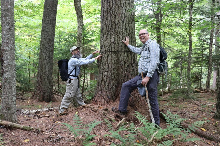 Dan Spada (left) and Ray Curran explore a first-growth Adirondack forest. Photograph provided by Adirondack Land Trust